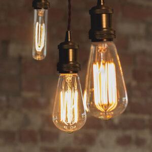 All Bulbs
